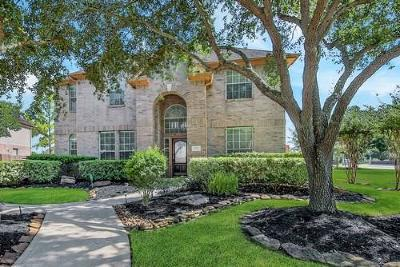 Sugar Land Single Family Home For Sale: 2223 Arundel Crossing Drive