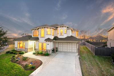 Friendswood Single Family Home For Sale: 313 Del Monte Drive