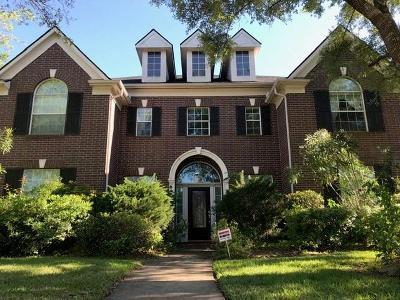 Houston Single Family Home For Sale: 19415 Desert Ivy Drive
