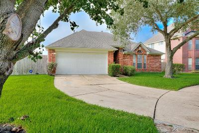 Sugar Land Single Family Home For Sale: 15803 Spruce River Court