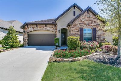 Fort Bend County Single Family Home For Sale: 14 Floral Hills Lane