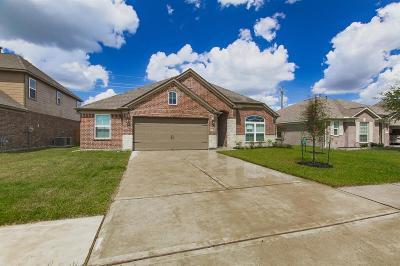 Rosenberg TX Single Family Home For Sale: $256,980