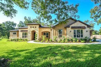 Fulshear Single Family Home For Sale: 32823 Woodfern Court