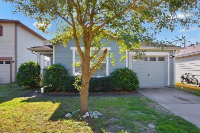 Tomball Single Family Home For Sale: 11435 Seven Sisters Drive