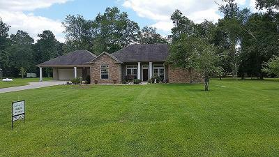 Dayton Single Family Home For Sale: 47 County Road 2311-1