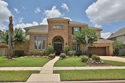 Houston Single Family Home For Sale: 8119 Sun Terrace Lane