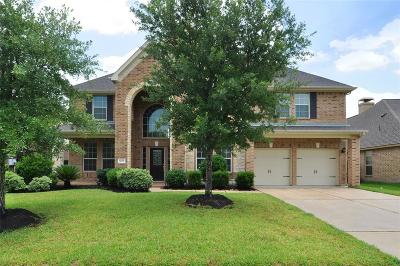 Houston Single Family Home For Sale: 14218 Wildwood Springs Lane