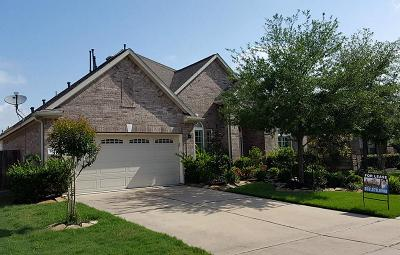Sugar Land Single Family Home For Sale: 6811 Fitzgerald Court