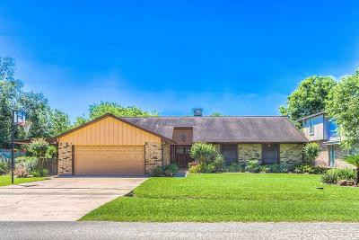 Webster Single Family Home For Sale: 2710 W Nasa Road