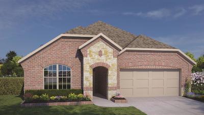 Rosenberg Single Family Home For Sale: 411 Summer Sky Lane