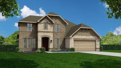 Rosenberg Single Family Home For Sale: 8231 Longear Lane