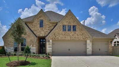 Tomball Single Family Home For Sale: 21423 Martin Tea Trail