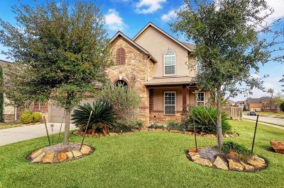 Tomball Single Family Home For Sale: 22602 Tangler Lane