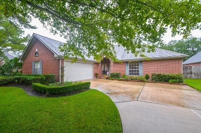 Sugar Land Single Family Home For Sale: 16926 Ascot Meadow Drive