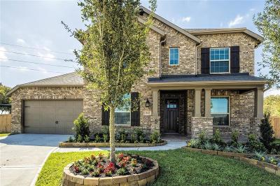 Fulshear Single Family Home For Sale: 30823 Falling Branch Drive