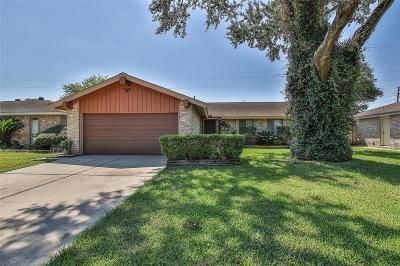Houston Single Family Home For Sale: 9418 Willow Wood Lane