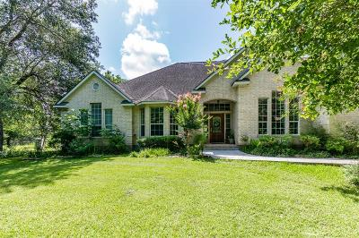 Pearland Single Family Home For Sale: 12425 Sunbrook Drive