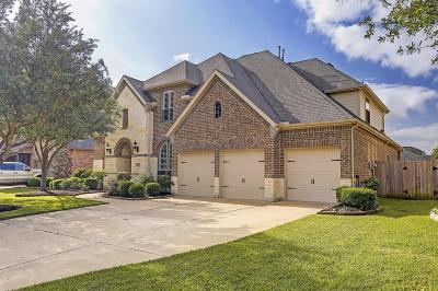 Katy Single Family Home For Sale: 28607 Thornbird Drive