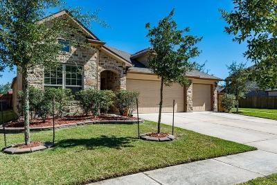Baytown Single Family Home For Sale: 6914 Hunters Creek Lane
