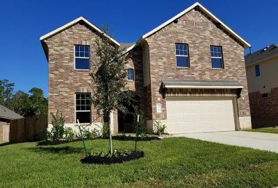 Conroe Single Family Home For Sale: 14386 Whitetop Peak Circle