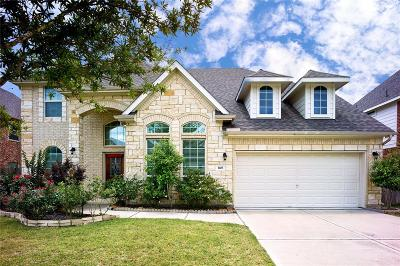 Friendswood Single Family Home For Sale: 1103 Haye Road