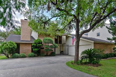 Houston Single Family Home For Sale: 1247 S Kirkwood Road