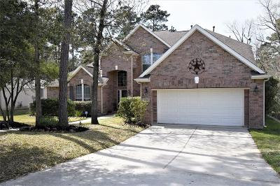 Conroe Single Family Home For Sale: 2136 Summit Mist Drive