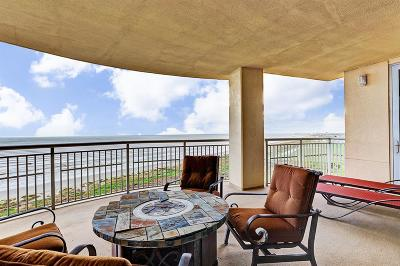 Galveston Mid/High-Rise For Sale: 801 E Beach Drive #TW1006