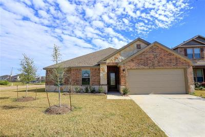 Manvel Single Family Home For Sale: 20 Royal Rose Drive