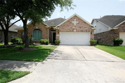 Houston Single Family Home For Sale: 7806 Blue Stream Court