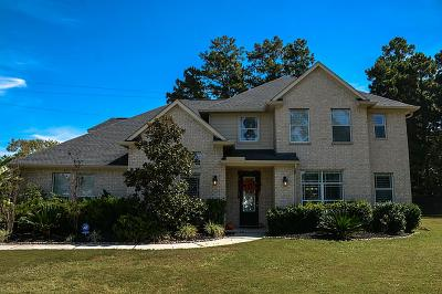 Montgomery Single Family Home For Sale: 16804 W Falcon Sound Drive