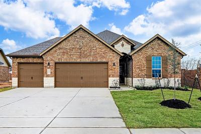 Pearland Single Family Home For Sale: 2802 S Galveston Avenue