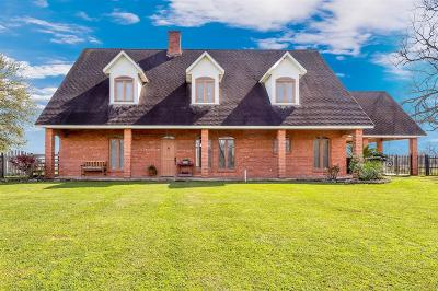 Fulshear Single Family Home For Sale: 34105 Fm 1093
