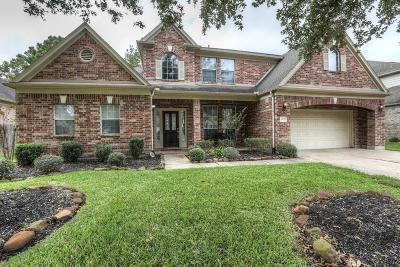 Houston Single Family Home For Sale: 8507 Brighton Lake Lane