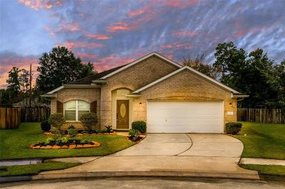 Tomball Single Family Home For Sale: 24902 Rosevale Court