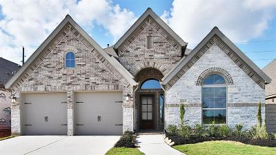 Manvel Single Family Home For Sale: 2015 Blackhawk Ridge Lane