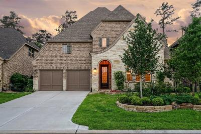 The Woodlands Single Family Home For Sale: 15 E Twin Ponds Court