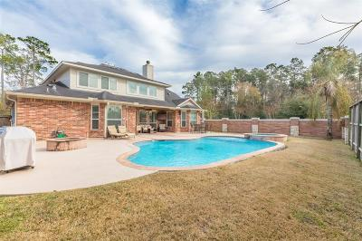 Spring Single Family Home For Sale: 803 Spring Source Place