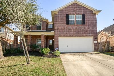 Tomball Single Family Home For Sale: 8211 Hayden Cove Drive