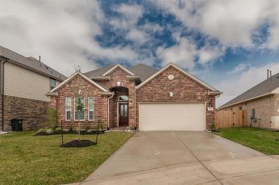 Dickinson Single Family Home For Sale: 232 Dale Ridge Lane
