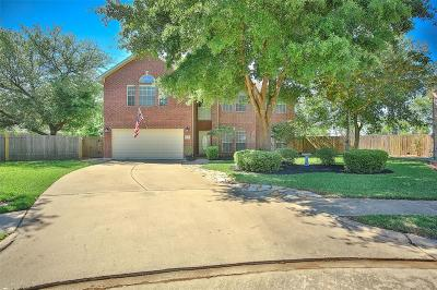 Katy Single Family Home For Sale: 3373 Zubin Lane