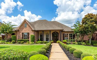 Beaumont Single Family Home For Sale: 4240 Brownstone Drive