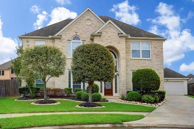 Pearland Single Family Home For Sale: 2602 Ravenlake Court