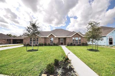 Manvel Single Family Home For Sale: 6606 Marble Falls