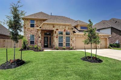Pearland Single Family Home For Sale: 2804 Afton Drive