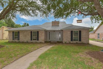 Houston Single Family Home For Sale: 4411 Belle Hollow Drive