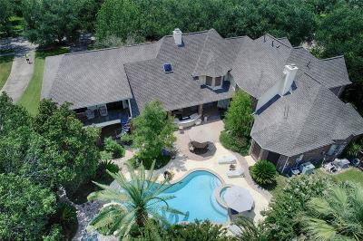 Houston Single Family Home For Sale: 19430 Kessington Lane