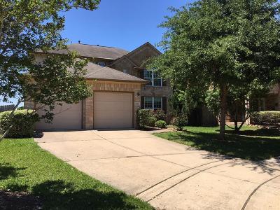 Missouri City Single Family Home For Sale: 7903 S Echo Branch