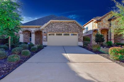 Tomball Single Family Home For Sale: 7 Hinterwood Way
