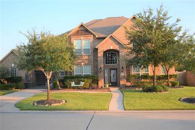 Tomball Single Family Home For Sale: 12103 Kobs Hill Lane